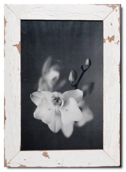 Vintage Bilderrahmen Basic für Bildformat 25 x 38 cm aus Kapstadt